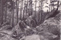 Itteville-Parc De La Butte PAS COURANTE ** Tbe Belle Carte De 1963 ** Ed. Estel N°20122 - France