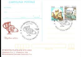 2-9-1995 ANNULLO SPECIALE 10� MOSTRA FILATELICA TEMATICA VITE E VINO 29010 CASTELVETRO PIACENTINO PIACENZA SU CARTOLINA