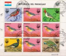 Paraguay CTO Sheetlet - Uccelli