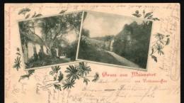 Alte AK - Alt Meiershof B. Alt Rehse 1899 , Neubrandenburg A. Tollensesee !!! - Neubrandenburg