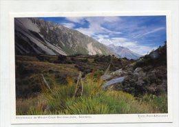 NEW ZEALAND - AK 222602 Südinsel - Speergrass Im Mount-Cook-Nationalpark - Nuova Zelanda