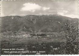 Italia 1955. Cartolina Viaggiata Di LEVICO - Veduta Generale Con Panarotta E Vetriolo. - Italia