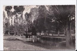 Carte 1950 BRULON /  La Piscine - Brulon
