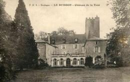 LE BUISSON - Château De La Tour - France