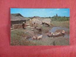 Vietnam  --  Native Home Mekong Delta Lowlands------- ---ref 1728 - Vietnam