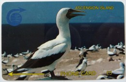 ASCENSION ISLANDS - GPT - £5 - 2CASA - Used