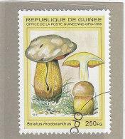 Rep. Guinea 1995  -  Yt 1065N  Used    Funghi - Mushrooms
