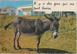 Il Y A Des Gens Qui Me Font Braire - Burros