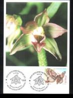 31-8-1996 ANNULLO SPECIALE 11� MOSTRA FILATELICA TEMATICA ORCHIDEE 29010 CASTELVETRO PIACENZA SU CARTOLINA