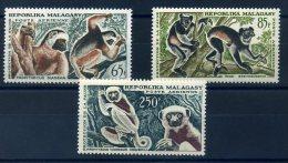 MADAGASCAR 1961 N� 84/ 86 ** MNH (sans charni�re)