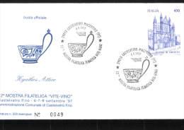 6-9-1997 ANNULLO SPECIALE 12� MOSTRA FILATELICA TEMATICA VITE VINO 29010 CASTELVETRO PIACENTINO PIACENZA BUSTA UFFICIALE