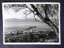 CALABRIA -CATANZARO -VIBO VALENTIA -F.G. LOTTO N°445 - Catanzaro
