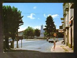 CALABRIA -CATANZARO -SOVERIA MANNELLI -F.G. LOTTO N°445 - Catanzaro