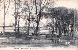 (33) Blaye - Intérieur De La Citadelle Et Les Cônes - Troupeaux De Vaches Boeufs - BE - 2 SCANS - Blaye