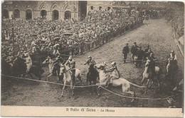 I2315 Siena - Il Palio - La Mossa - Cavalli Horses Chevaux Pferde Caballos / non viaggiata