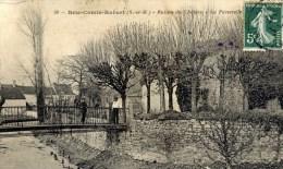 BRIE COMTE ROBERT Ruines Du Chateau La Passrelle Animée - Brie Comte Robert