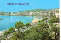 PALMA DE MALLORCA - PASEO MARITIMO - Mallorca
