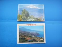 43)  Iles Canaries :  La Orotava; El Teide : Recto Verso :  2 Cartes - Tenerife