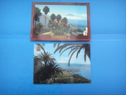47)  Iles Canaries :  Costa Norte:el Sauzal ; El Teide : Recto Verso :  2 Cartes - Tenerife