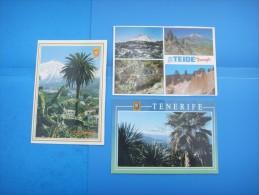 65)  Iles Canaries :  El Teide : Recto Verso :  3 Cartes - Tenerife