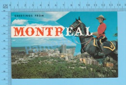Montreal Quebec  ( Greeting From Montreal  RCMP Police Horse )recto/Verso - Police - Gendarmerie