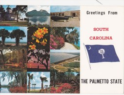 CPM Greetings From South Carolina - The Palmetto State - Drapeau - Non Classés