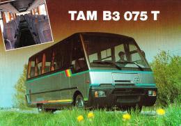 TAM B3 075 T