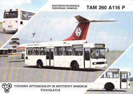 TAM 260 A 116 P