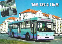 TAM 232 A 116 M