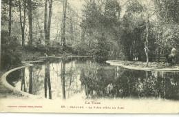 81 GAILLAC LA PIECE D EAU DU PARC - Gaillac