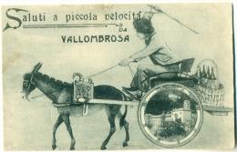 Saluti A Piccola Velocitá Da VALLOMBROSA Firenze Asino UMORE 1921 - Firenze