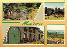 "CP De MONTENAU - IVELDINGEN "" Ameltal Bei Monteau , Bauernhof Im Iveldingen ,  Hotel WOLFSBUCH , ..."" AMEL - Amblève - Amel"