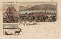 Norway - Hilsen Fra Tromso - Litho 1899 - Norvège