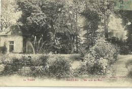 81 GAILLAC UN COIN DU PARC - Gaillac
