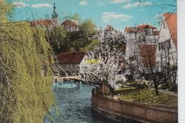 Weideinberg Fichtelgebirge An Der Steinach - Bayreuth