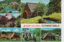 Foret Noire  Schwarzwald - Bad Herrenalb