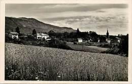 Haute Savoie - Ref- U 316 - Collonges Sous Saleve - L Eglise Et Les Ecoles - Ecole - Theme Ecoles - Carte Bon Etat - - Andere Gemeenten