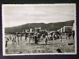 CALABRIA -CATANZARO -SANT'EUFEMIA LAMEZIA -F.G. LOTTO N°445 - Catanzaro