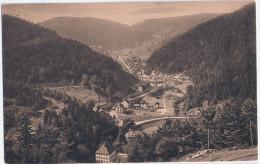 Blick Auf TRIBERG Vom Hohnen 14.9.1921 Gelaufen Infla Frankatur - Triberg