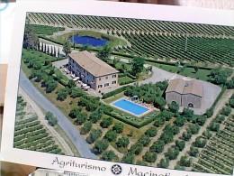 MACINATICO AGRITURISMO A S GIMINIANO SIENA  N1995 ES14886