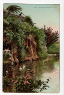 Cadiz El Parque De Genoves La Gruta Tarjeta Postal Spain Vintage Original Postcard Cpa Ak (W4_687) - Cádiz