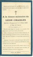 Rouvroy Dampicourt Léon Charles 1931 1932 - Rouvroy