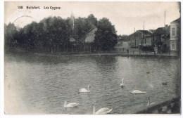 Watermael Watermaal Boitsfort Bosvoorde Boisfort Panorama Les Cygnes (188) Etangs  1910 - Watermael-Boitsfort - Watermaal-Bosvoorde