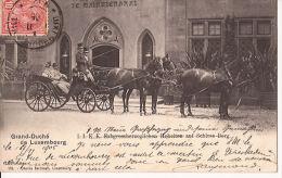 GD DE LUXEMBOURG ERBGROSSHERZOGIN ATTELAGE DE CHEVAUX 1905 Re 295 - Famille Grand-Ducale