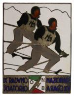 SPILLA/BADGE CON SMALTI 9° RADUNO NAZIONALE SCIATORIO DELL'ORDINE NAZIONALE BALILLA 1936 ASIAGO #19 - Esercito