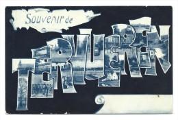 CPA - TERVUREN - Souvenir De TERVUEREN  - Fantaisie  // - Tervuren