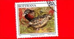 BOTSWANA - Usato - 1997 - Uccelli - Birds - Oiseaux - Quaglia - Harlequin Quail - 20 - Botswana (1966-...)