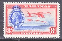 BAHAMAS   96  *   BIRDS  FLAMINGOS - Bahamas (...-1973)