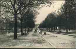 Bruxelles - Koekelberg : Avenue de la Libert�