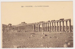 CPA SYRIE PALMYRE La Grande Colonnade N° 720 - Syrie